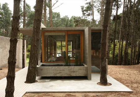 Modern Concrete And Wood House Within The Trees Sunshine